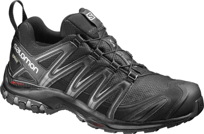 29c433ddc0d Salomon XA Pro 3D GTX black/magnet (men) (393322) starting from ...