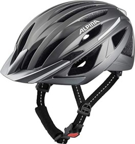 Alpina Haga Helm silber matt (A9742.1.25)