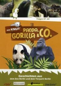 Panda, Gorilla & Co. Vol. 7 (Folgen 57-60) (DVD)