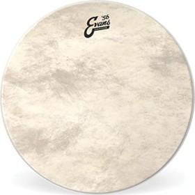 "Evans Calftone Bass 18"" (BD18CT)"