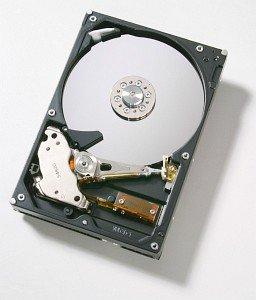 HGST Deskstar 7K250 40GB, IDE (HDS722540VLAT20/08K0461)