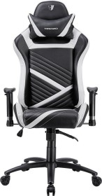 Tesoro Zone Speed F700 Bürostuhl, schwarz/weiß (TS-F700WH)