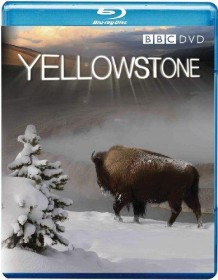BBC: Yellowstone - Tales From The Wild (Blu-ray) (UK)