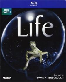 BBC: Life (Blu-ray) (UK)
