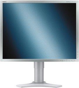 "NEC MultiSync LCD2190UXi silver/light grey, 21.3"" (60001702)"
