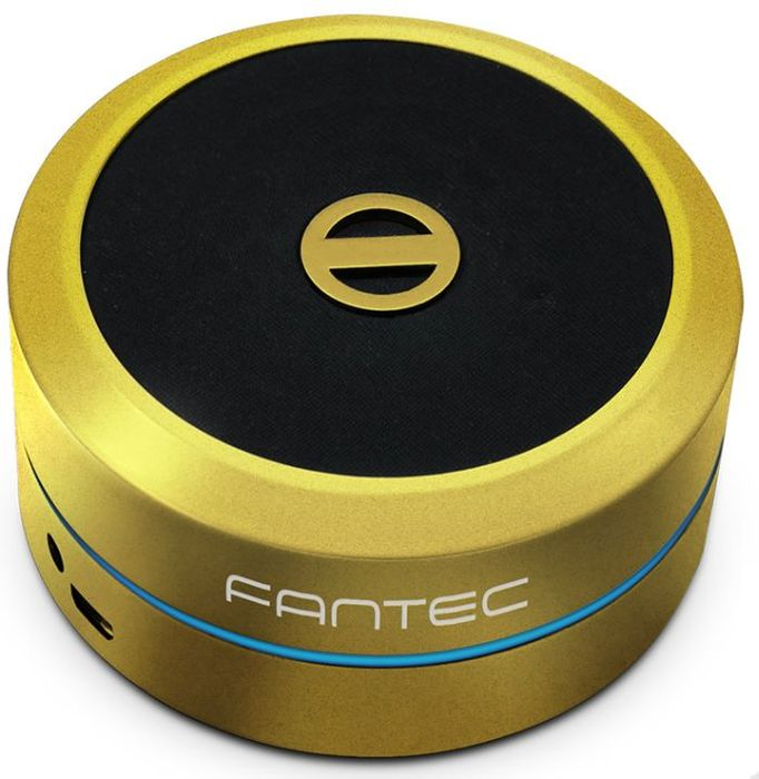 Fantec PS10AJ gold (PS10AJ-GD)
