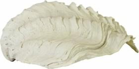 Back to Nature Ergänzungsmodul Tridacna-Clam S, 23x8.5x18cm (03000188)