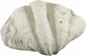 Back to Nature Ergänzungsmodul Tridacna-Clam L, 39x13x26cm (03000193)