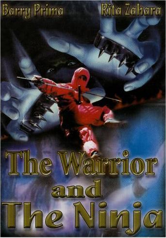 The Warrior and the Ninja -- via Amazon Partnerprogramm